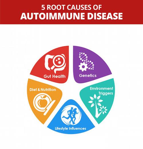 root causes of autoimmune disease like hashimotos celiac colitis